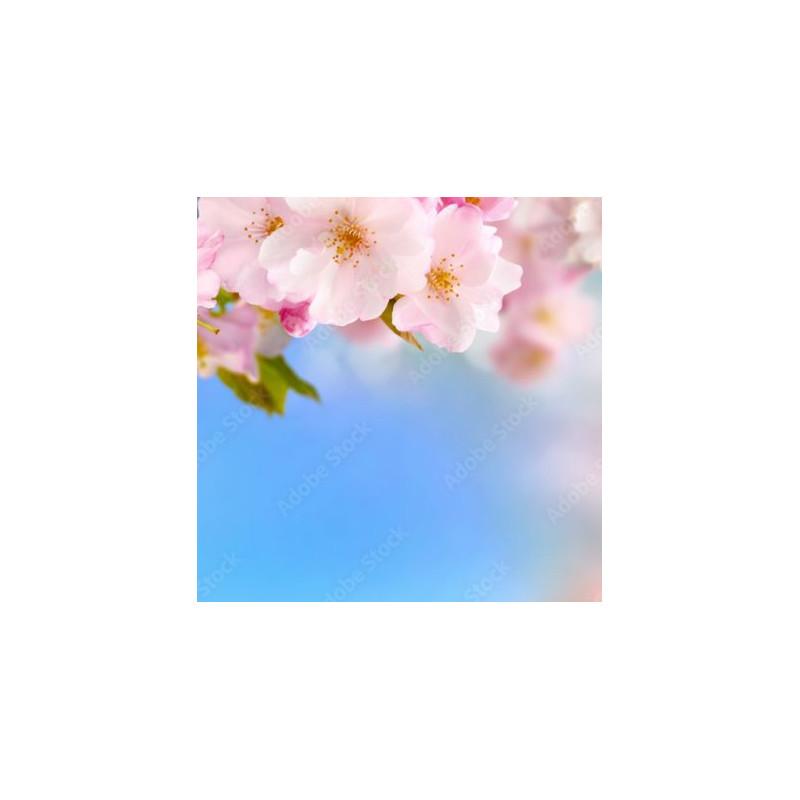 Zestaw naklejek - Lalki 2 95 cm x 45 cm