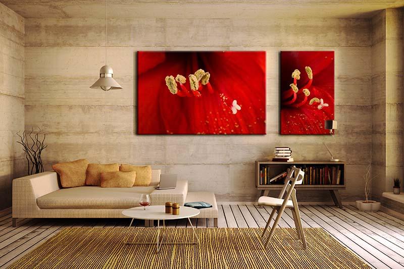 Obraz Dyptyk w czerwonymi kwiatami w powiększeniu makro
