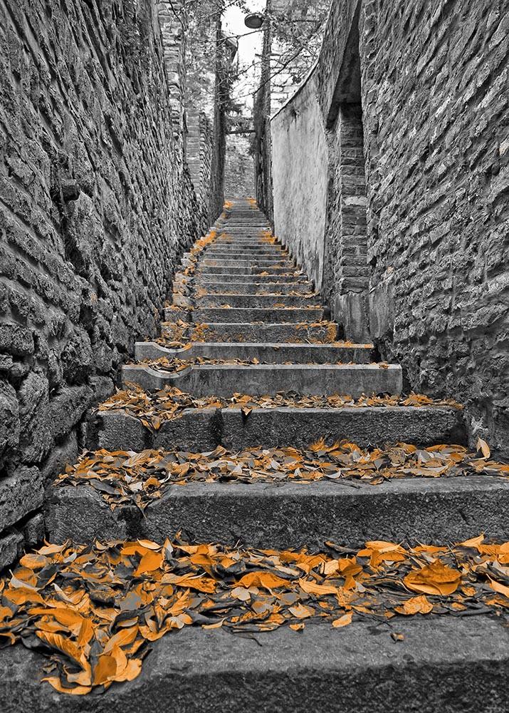Fototapeta Czarno białe z kolorem Fotografia czarno-biała - pomarańczowe liście na schodach