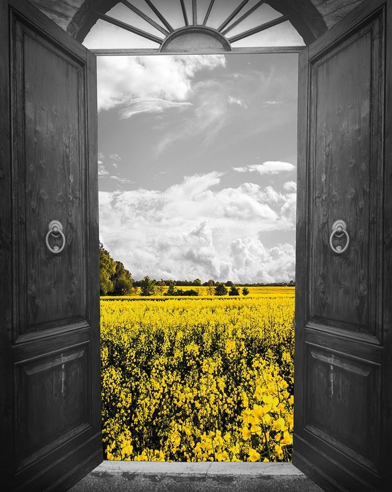 FototapetaFotografia czarno-biała - żółtym polem za otwartymi drzwiami
