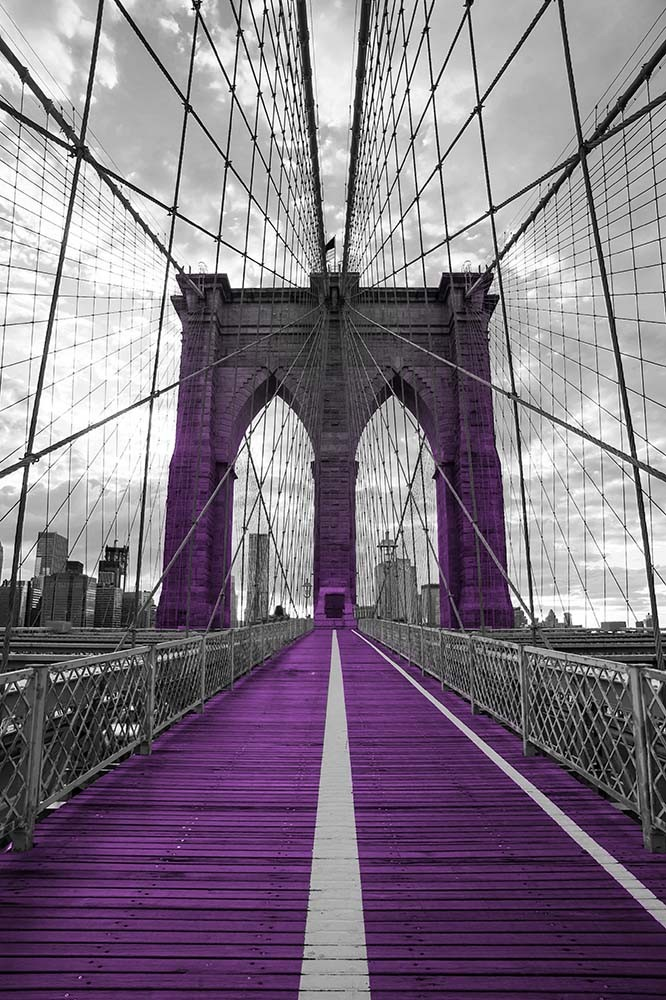 Fototapeta Czarno białe z kolorem Fotografia czarno-biała z fioletowym akcentem - Most Brookliński w Nowym Yorku