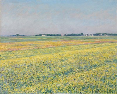 Fototapeta Reprodukcje na ścianę Gustave Caillebotte - The plain of Gennevilliers, yellow fields