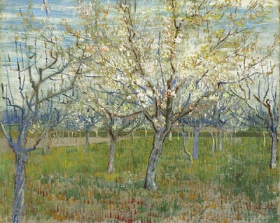 FototapetaVincent van Gogh - The pink orchard