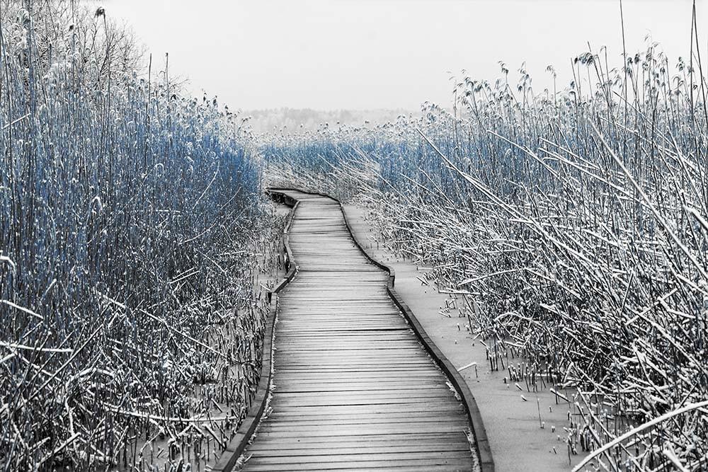 Fototapeta Czarno białe z kolorem Fotografia czarno-biała z niebieskim akcentem - Kładka zimą