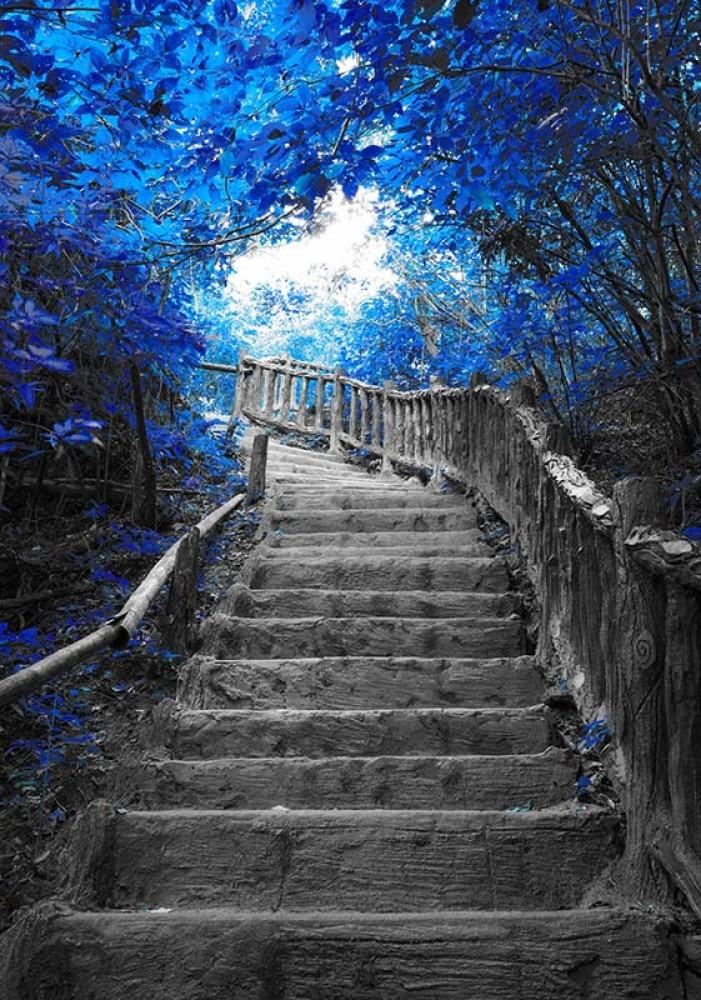 FototapetaFotografia czarno-biała z niebieskim akcentem - Schody