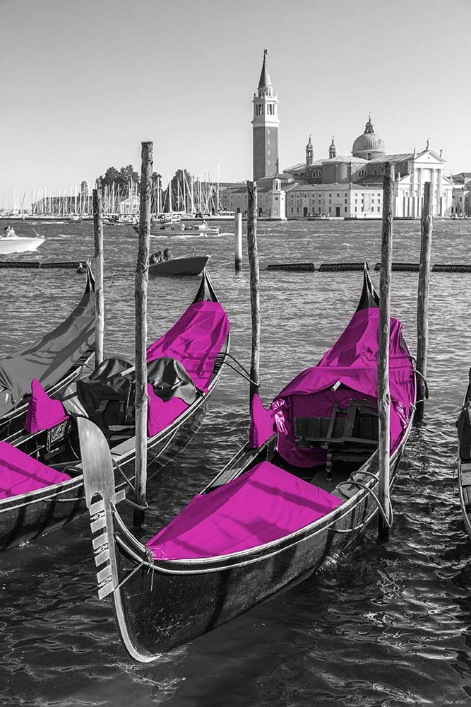 Fototapeta Fotografia czarno-biała z akcentem fioletowym - Gondole