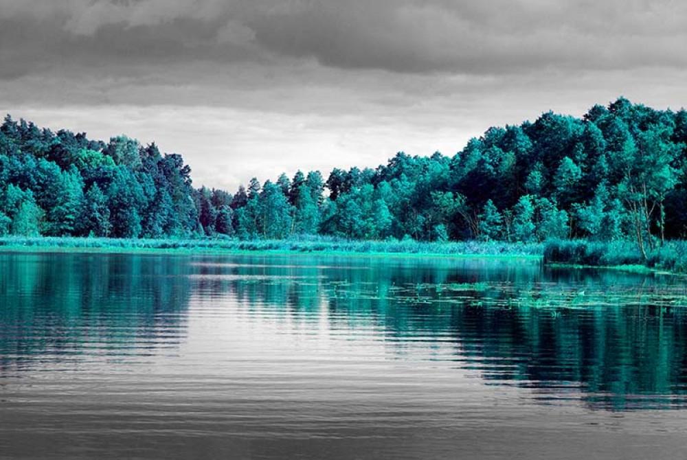 FototapetaFotografia czarno-biała z turkusowym akcentem - Drzewa nad jeziorem