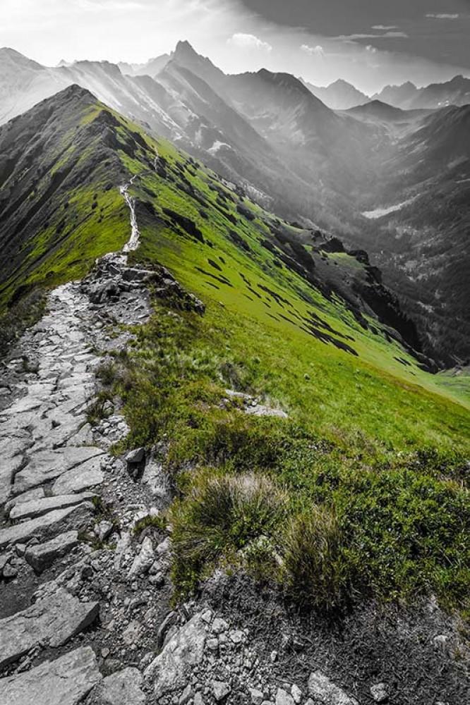 FototapetaFotografia czarno-biala z zielonym akcentem - Polskie góry