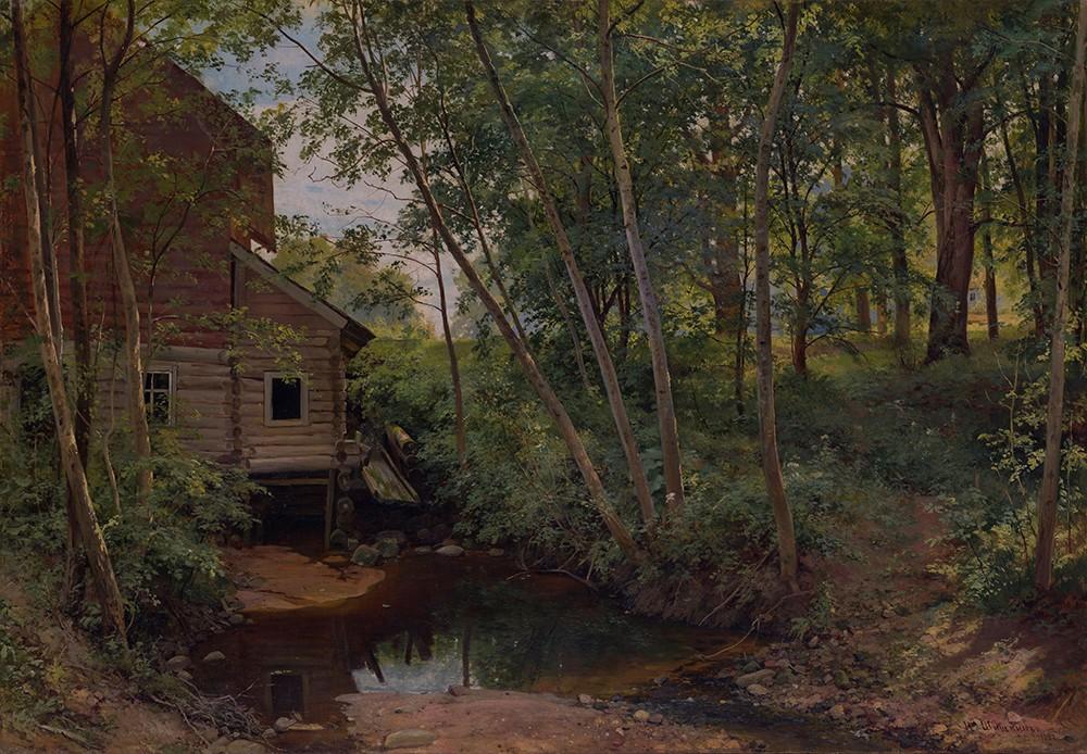 Fototapeta Reprodukcje na ścianę Iwan Szyszkin - Forest Mill