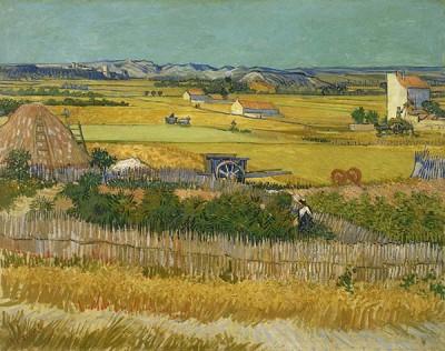Fototapeta Vincent van Gogh - Żniwa