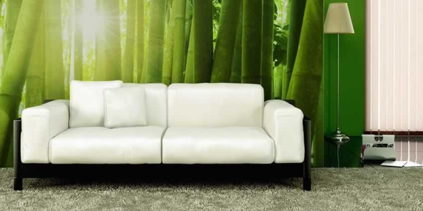 Fototapeta z motywem bambusa