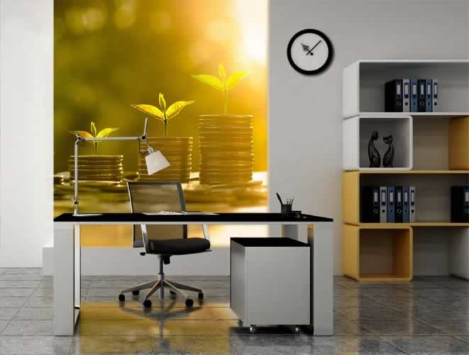 Fototapeta do biura rachunkowego z motywem monet