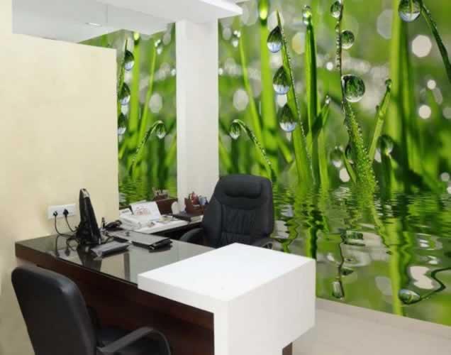 Fototapeta do gabinetu lekarskiego: świeża zielona trawa z kroplami rosy