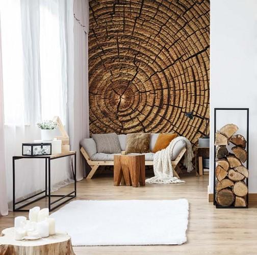 Fototapeta do salonu z motywem pnia drzewa