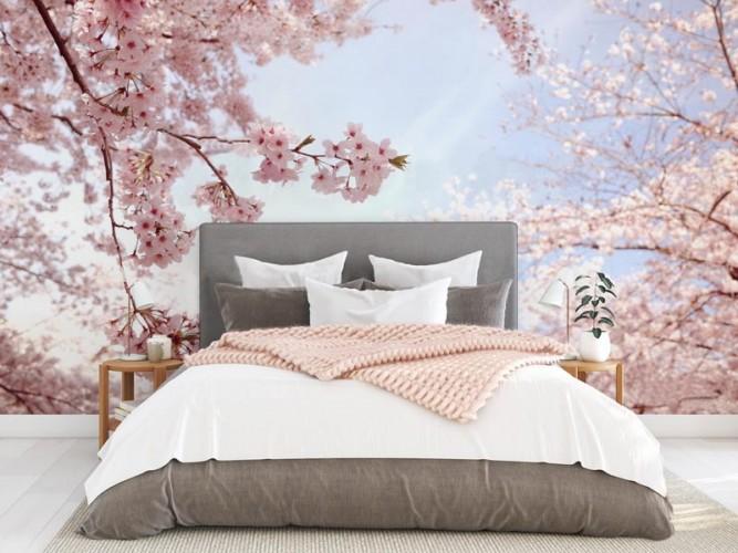 Fototapeta do sypialni - Kwitnąca wiśnia