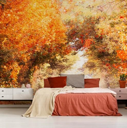 Fototapeta jesienna z aleją drzew
