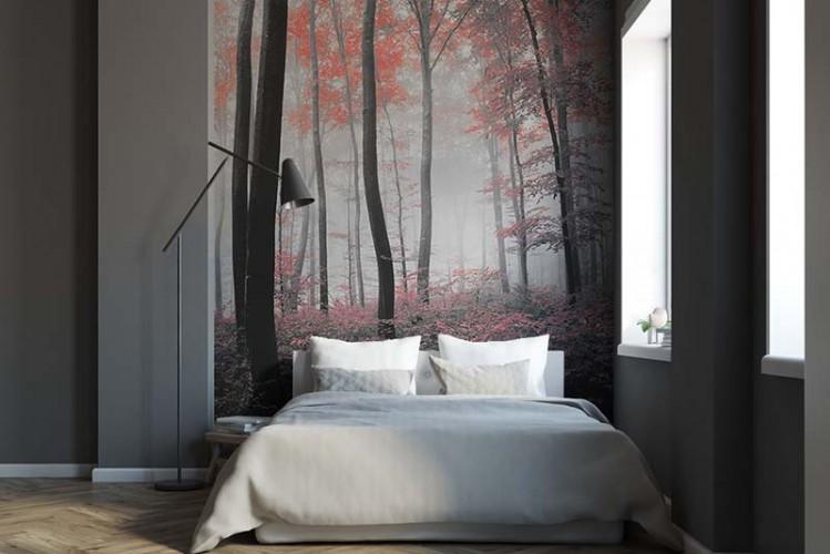 Fototapeta czarno-biała z czerwonym akcentem - Las we mgle