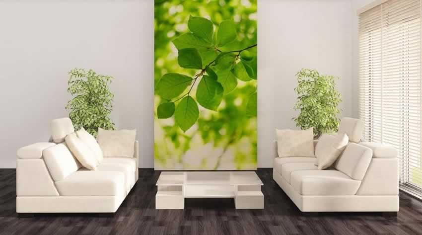 Fototapeta z motywem zielonych liści