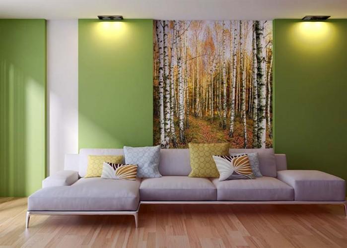 Fototapeta powiększająca przestrzeń - las brzozowy jesienną porą