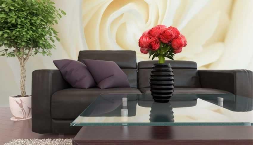 Fototapeta z motywem białej róży