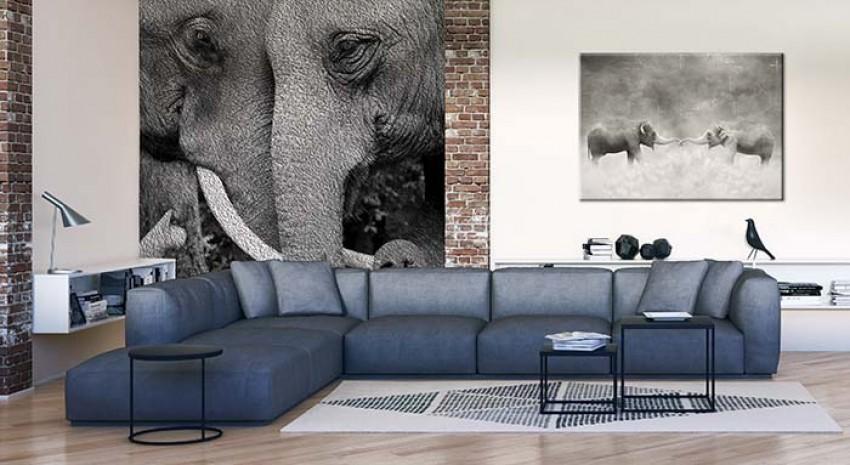 Fototapeta czarno-biała ze słoniami