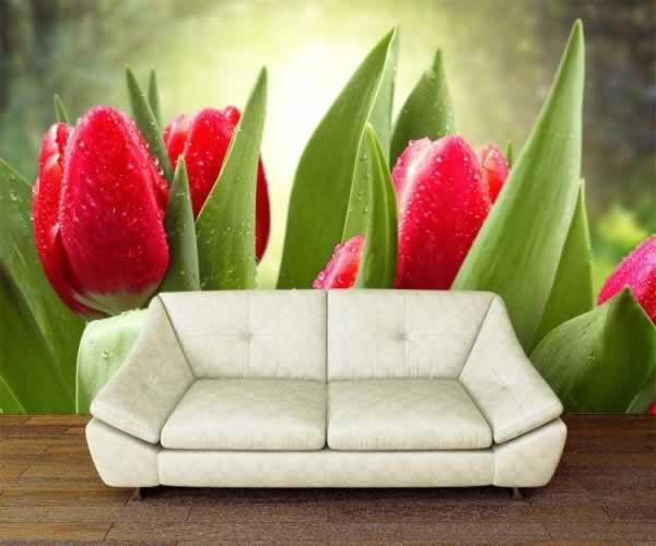 Fototapeta z motywem tulipanów