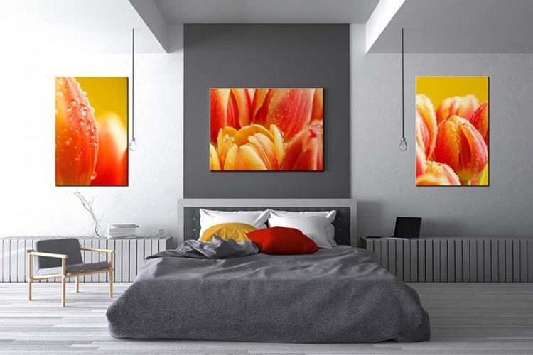 Obraz na płótnie z tulipanami