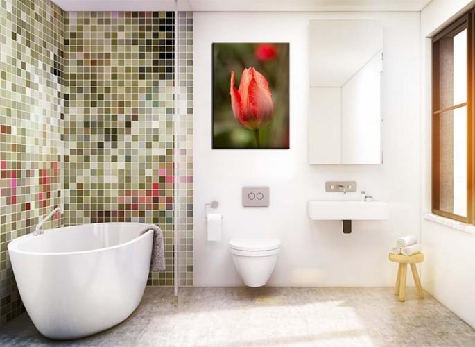 Obraz na płótnie do łazienki - czerwony tulipan z kroplami wody