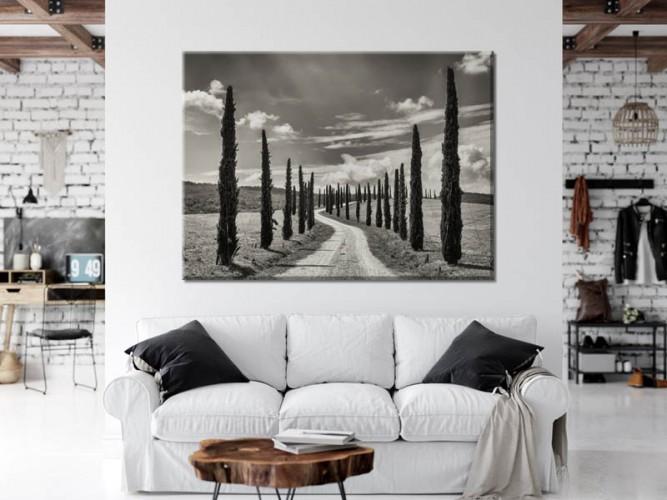 Obraz na płótnie do salonu - Czarno-biały pejzaż z cyprysami