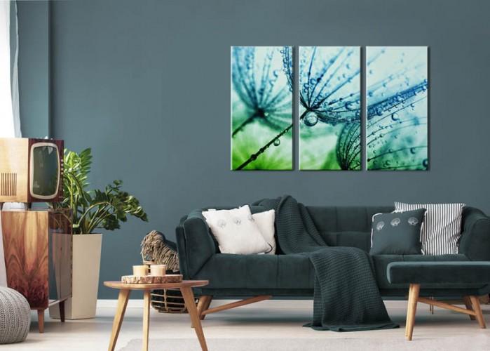 Obraz tryptyk do salonu - Dmuchawce z kroplami rosy
