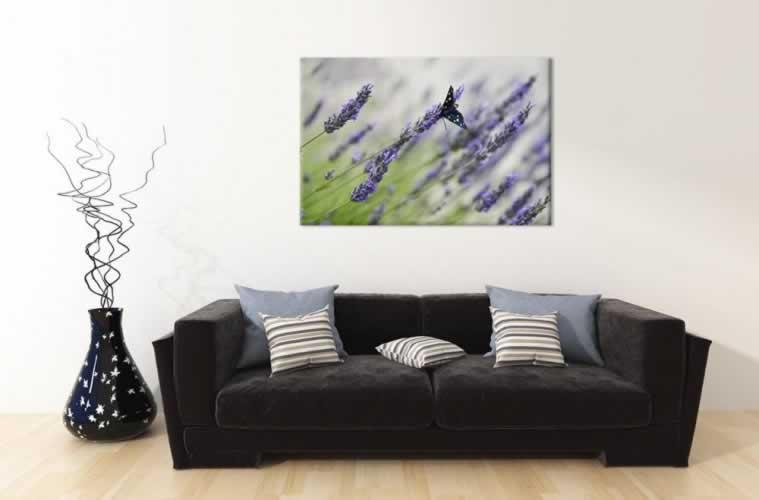 Obraz na płótnie z lawendą i motylem