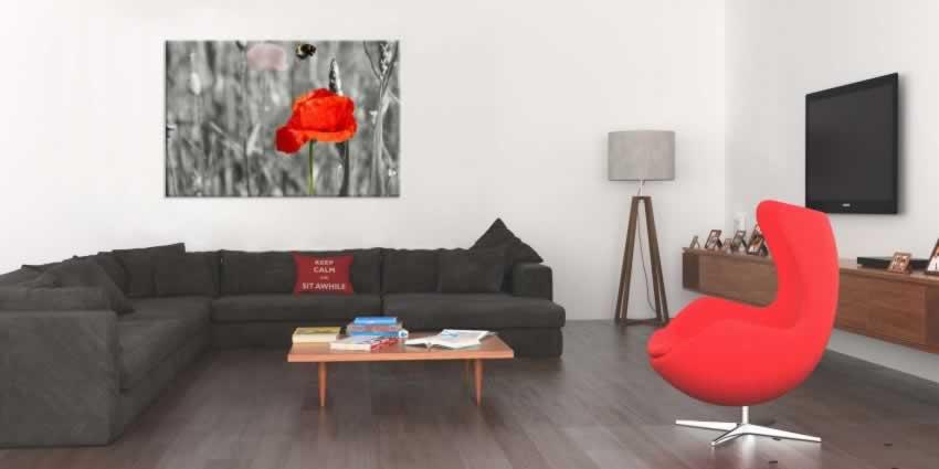 Obraz na płótnie czarno-bialej kolorystyce z czerwonym makiem