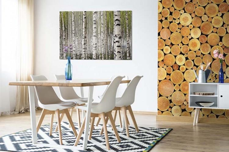 Obraz na plexi z lasem brzozowym do jadalni