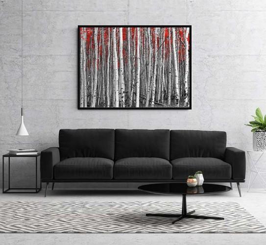 Obraz na płótnie z lasem brzozowym w czerni i bieli z akcentami czerwonego koloru