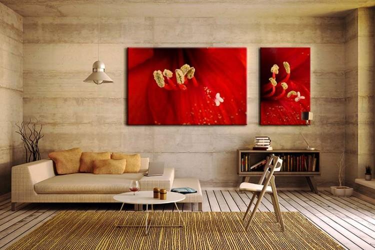 Obraz na płótnie z czerwonym kwiatem w powiększeniu makro