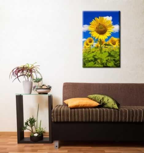 Obraz na płótnie ze słonecznikami