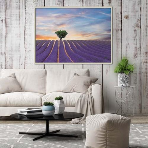 Obraz w ramie z widokiem na pole lawendy