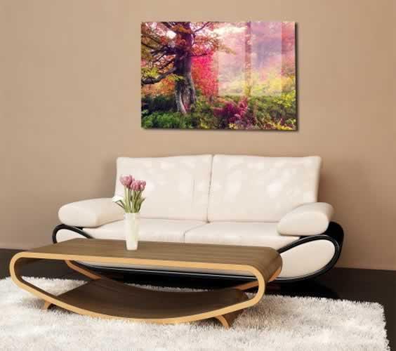 Obraz na szkle Piękne jesienne drzewa