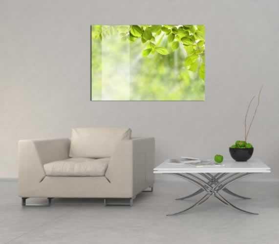 Obraz na szkle Zielone liście