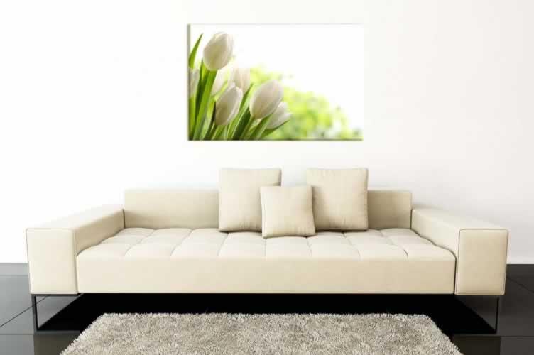 Obraz na płótnie z motywem białych tulipanów