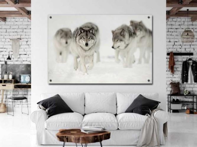 Panel szklany wilki na polowaniu