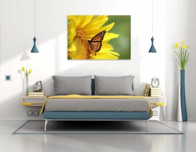 Plakat ze słonecznikiem i motylem