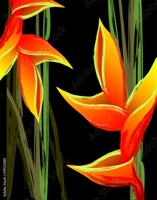 Obraz Digital painting of colourful flower design