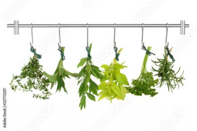 Obraz na Szkle Herb Leaves Drying