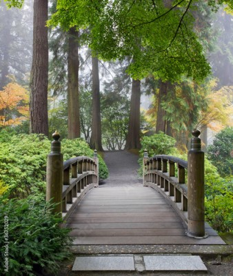 Fototapeta Foggy Morning at Wooden Foot Bridge at Japanese Garden