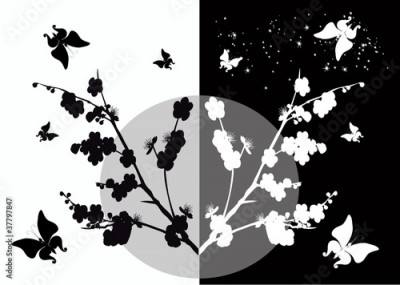 Plakat cherry flowers and butterflies silhouette on white and black