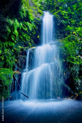 Fototapeta Beautiful Lush Waterfall