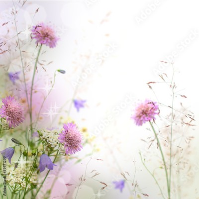 Obraz Beautiful pastel floral border - blurred background