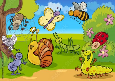 Fototapeta cartoon insects on the meadow