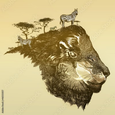 Fototapeta Lion of savanna